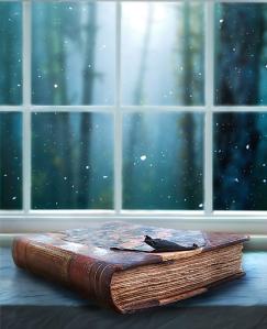 libro ventana